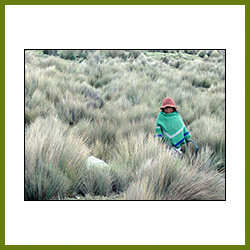 International Image - Child in Paramo